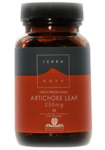 Artichoke Leaf (fresh freeze dried – ORGANIC) 250mg