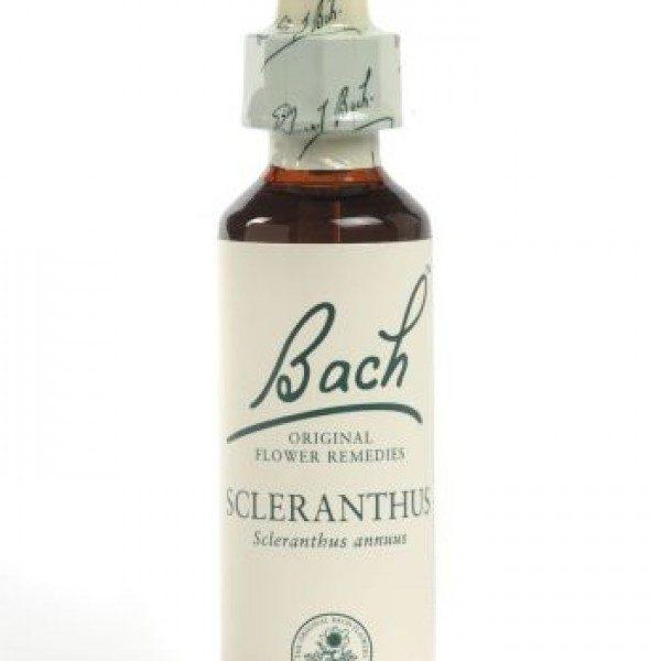 Scleranthus Flower Essence 20ml